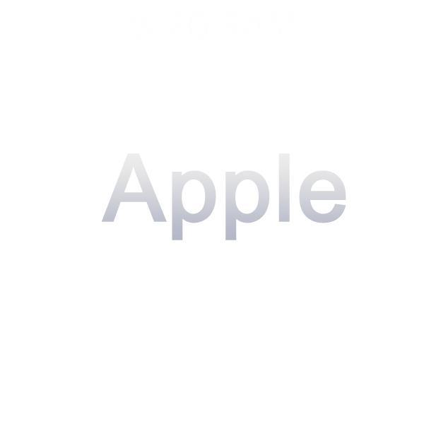 APPLE New iPad WIFI 32G 灰